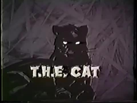 THECat001